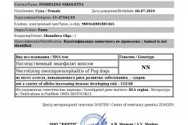 NME-DM-PLL-FOMIELENS-NIKOLETTA_4